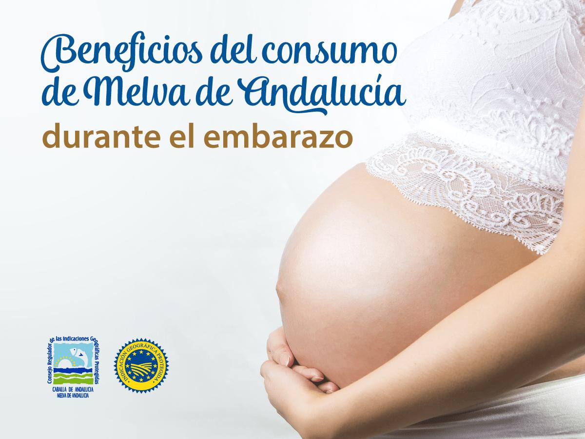 Beneficios del consumo de Melva de Andalucía durante el embarazo