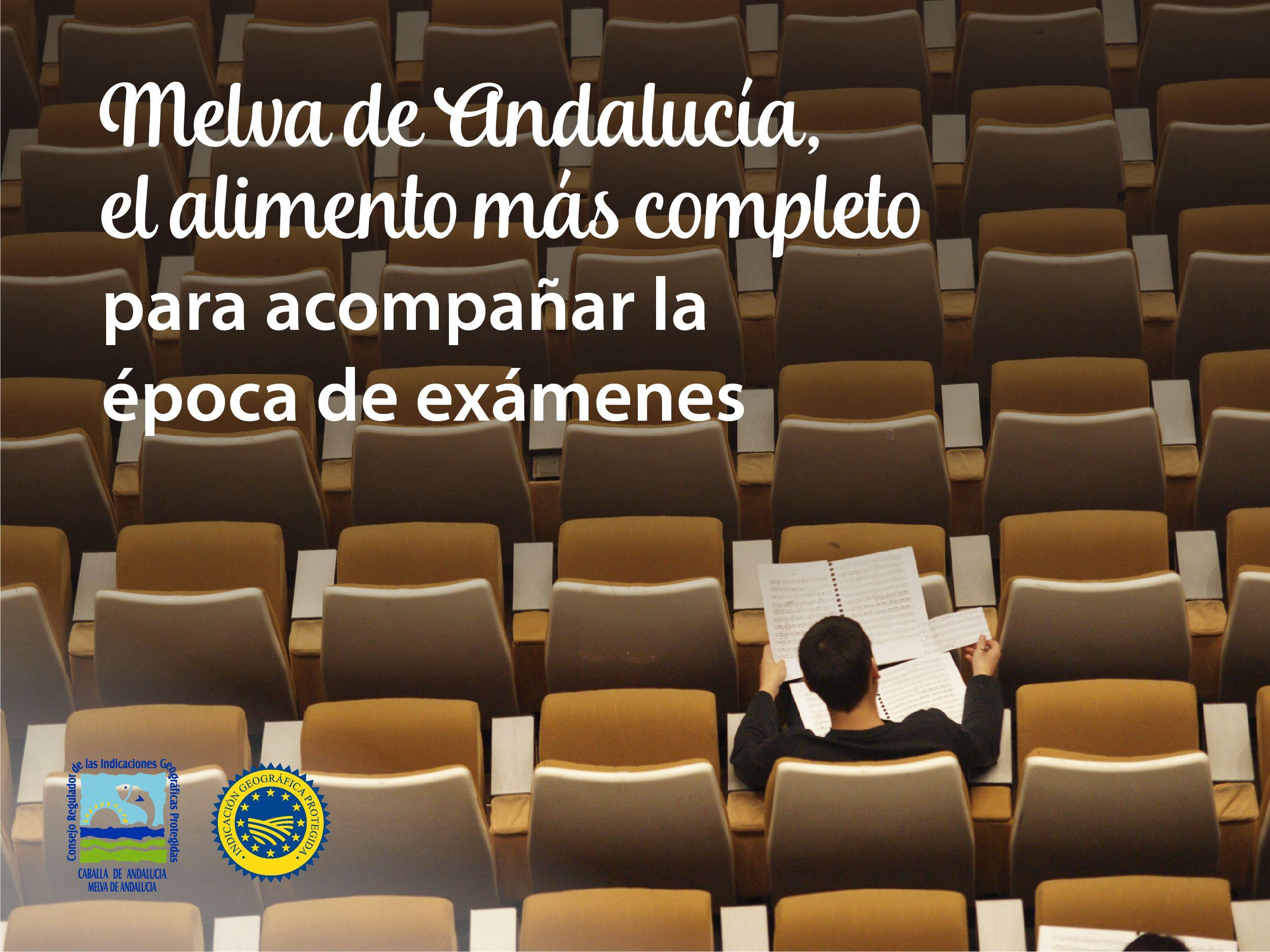 Melva de Andalucía Alimento para estudiar mejor