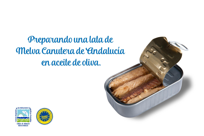 Preparando una lata de melva canutera de Andalucía en aceite de oliva