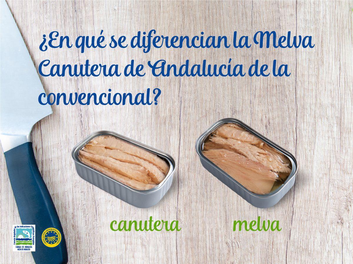 ¿En qué se diferencia la Melva Canutera de Andalucía de la común?