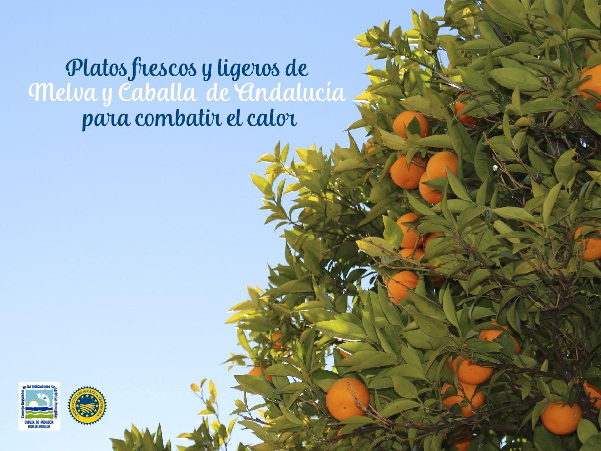 Platos frescos y ligeros de Melva de Andalucía y Caballa de Andalucía para combatir el calor