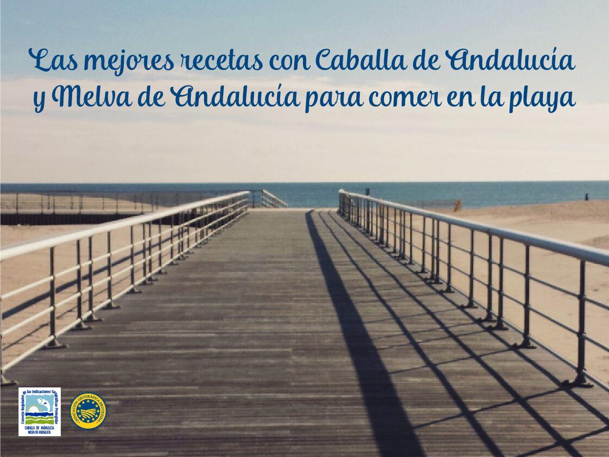 Las mejores recetas con Caballa de Andalucía y Melva de Andalucía para comer en la playa